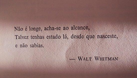 Frases - Walt Whitman - Arte Beto Piccolo - Facebook