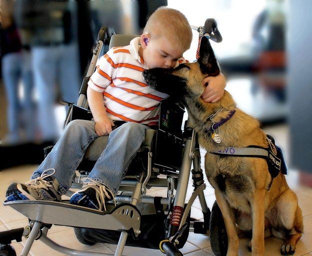 Lucas Hembree e o seu cão-guia, Juno, compartilham um momento.