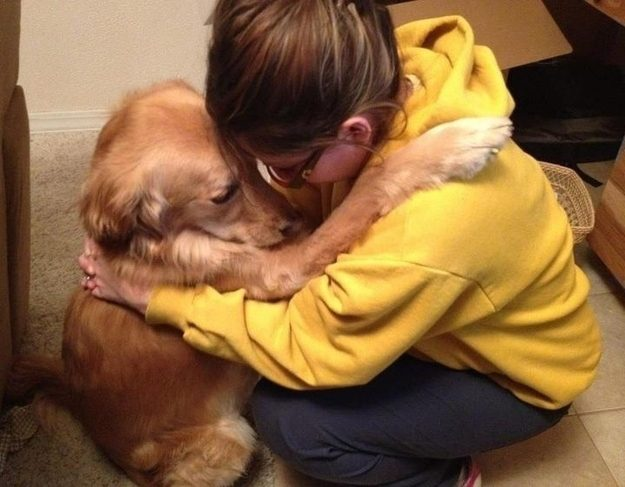 aprender-cachorros-4