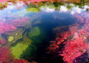 este é o rio mais colorido2