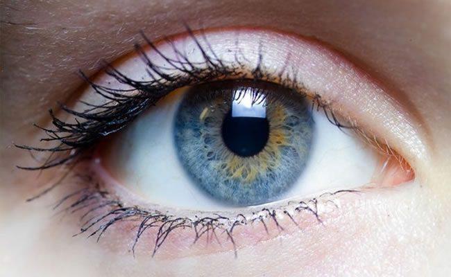 7 fatos incríveis que provam que os olhos são a janela