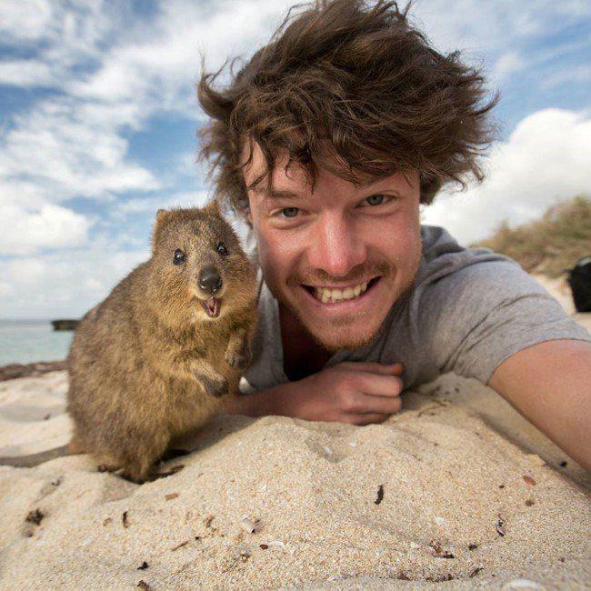 selfie-com-animais-1