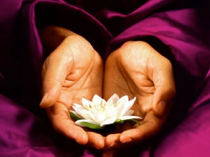 8 versos do dalai lama para controlar2