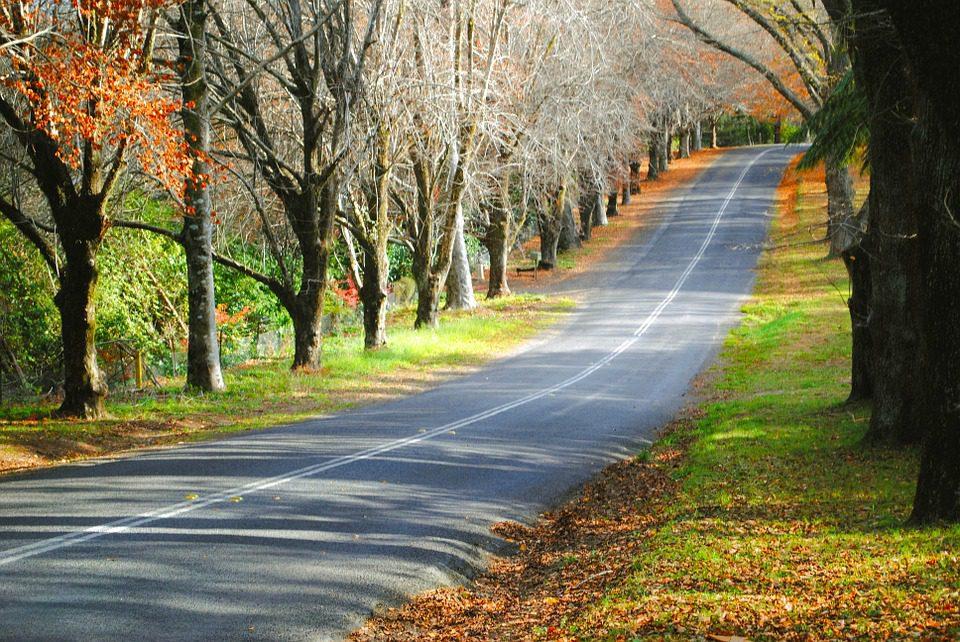 outono estrada