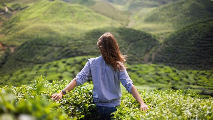 freedom girl in mountains girl in the mountains in a blue shirt