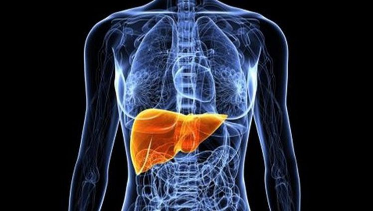 ruim do fígado capa