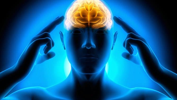 "A mente comanda e ""molda"" o cérebro. Está cientificamente comprovado."