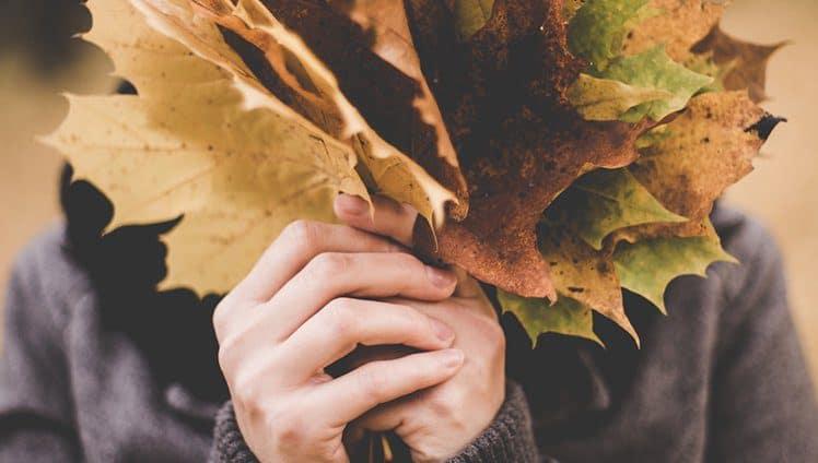 Mês de Abril Outono transformações Vibração Energética do número 4