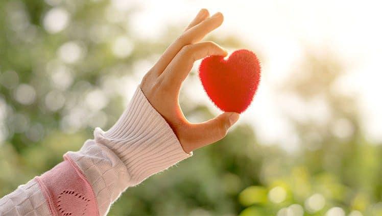 Lição do Amor É tempo de renovar mudar as atitudes e contribuir com o Todo. site