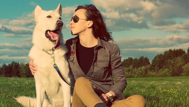 nossos cães nos amam