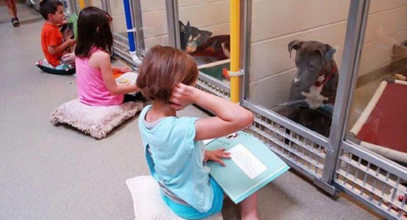 Crianças leem para cães