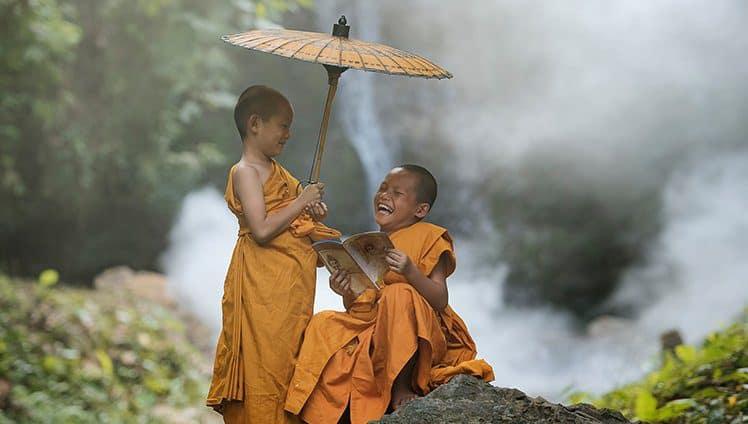 Cultive-a-paz