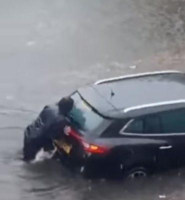 2cao de 10 anos viraliza ao ser filmado ajudando dona a empurrar carro preso em inundacao